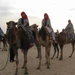 Tunisia_24