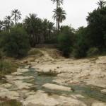 Tunisia_39