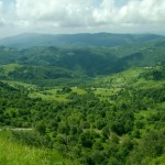 gruziya