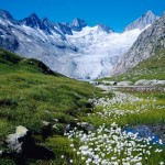 World_Switzerland_Unteraargletscher__