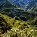 World_Asia_Ancient_Rice_Terraces___Philippines_008945_