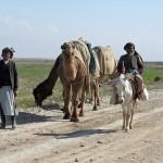afgan_1