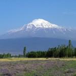 armenia_ararat_3